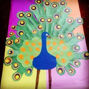 peacock bulletin board