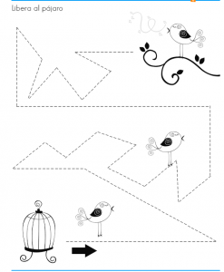 printable bird trace worksheet