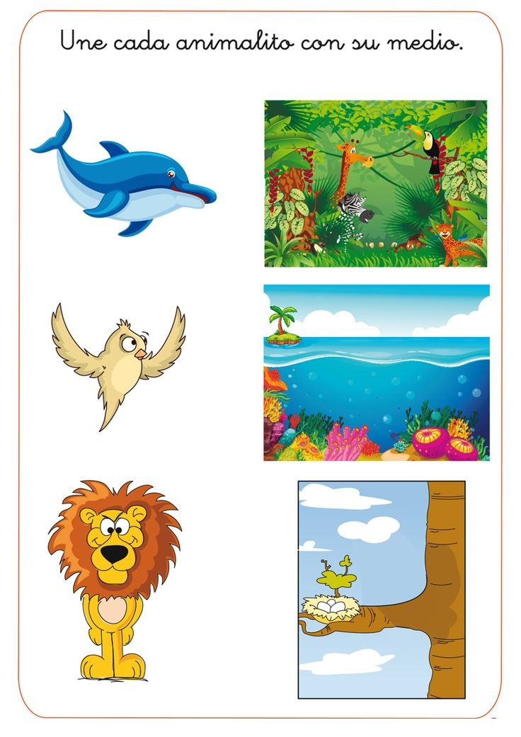 Animal Homes Worksheets For Kindergarten