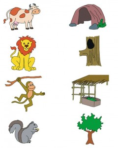 animal habitat worksheet for kids (2)