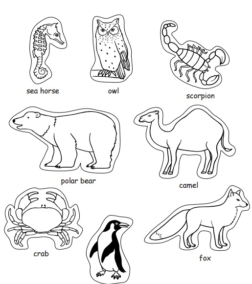 math worksheet : craftsactvities and worksheets for preschooltoddler and kindergarten : Animal Habitat Worksheets For Kindergarten