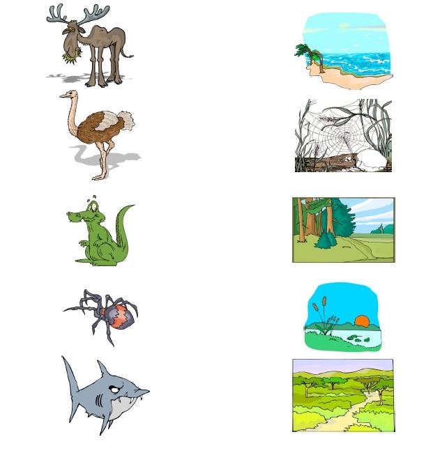 Animal habitats worksheets for second grade