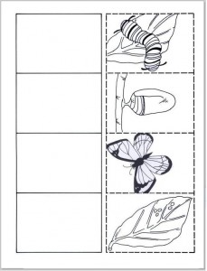 animal life cycle worksheet for kids crafts and worksheets for preschool toddler and kindergarten. Black Bedroom Furniture Sets. Home Design Ideas