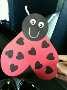 heart butterfly lady bug for valentine day (4)