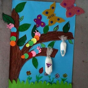 butterfly bulletin board