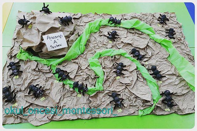 ant crafts