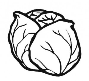 cabbage_coloring_page