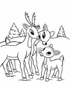 christmas_santa's_reindeer_coloring_pages  (14)