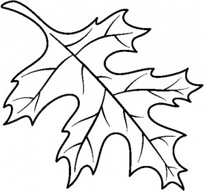 coloring_page_leaf
