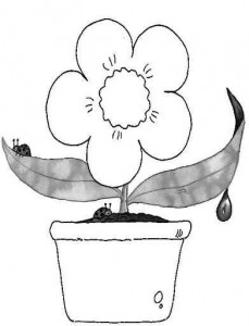 flower_and_pot_coloring