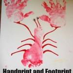 footprint lobsters craft