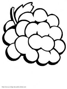 grapes coloring
