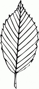 leaf_coloring_pages