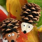 pinecone hedgehog