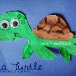 sea turtle craft