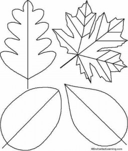 simple_leafs_coloring