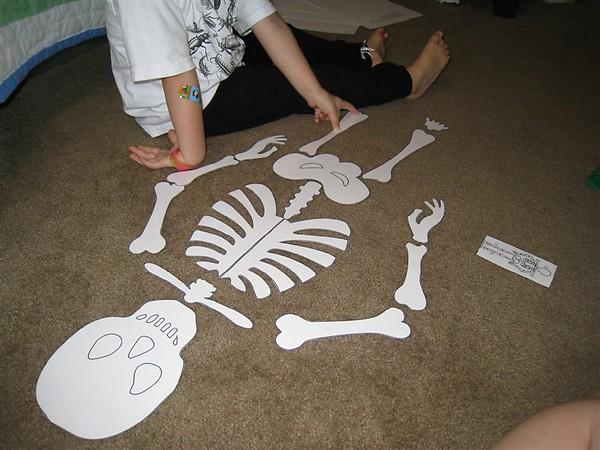 skeleton craft for kids (14)
