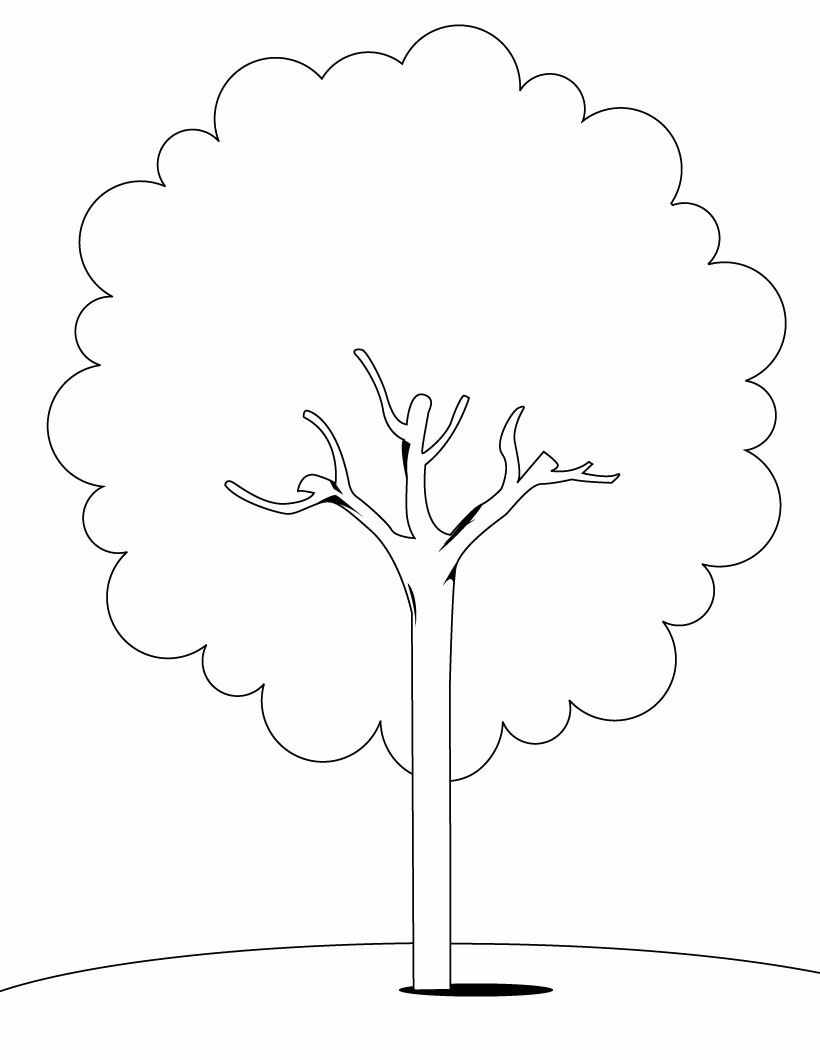 tree-coloring-pages-