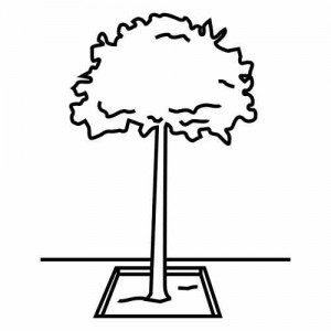 tree_printable