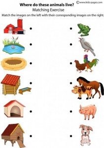 Matching animals to their home worksheet