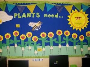 Plants Need bulletin board