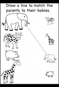 animal baby parent21
