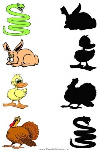 animal shadow match worksheets (4)