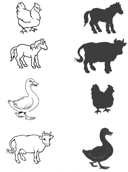 Animal shadow match worksheets – Matching Worksheet for Kindergarten