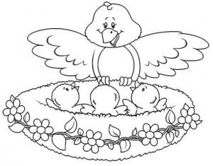 bird's nest coloring