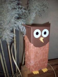 box owl craft