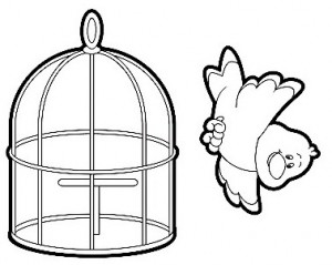 cage coloring