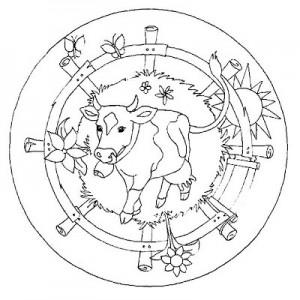 cow mandala coloring page