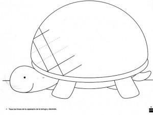 diagonal_prewriting_activities_examples_worksheets_turtle