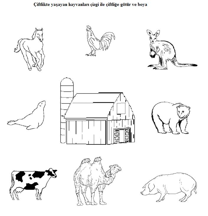 Easy Animal Matching Worksheets For Preschool Kids 4 Crafts