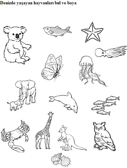 Easy Animal Matching Worksheets For Preschool Kids 44 Crafts