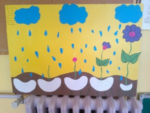 flower grow bulletin board 1