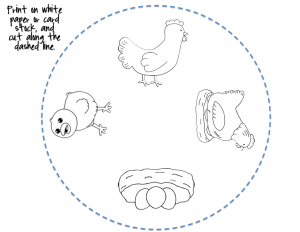 free Life Cycle of a chicken coloring