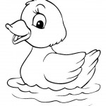 free duck coloring page for kids (18)