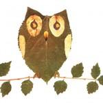 leaves owl craft