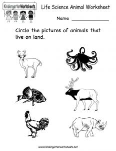 life-science-animal-worksheet-printable