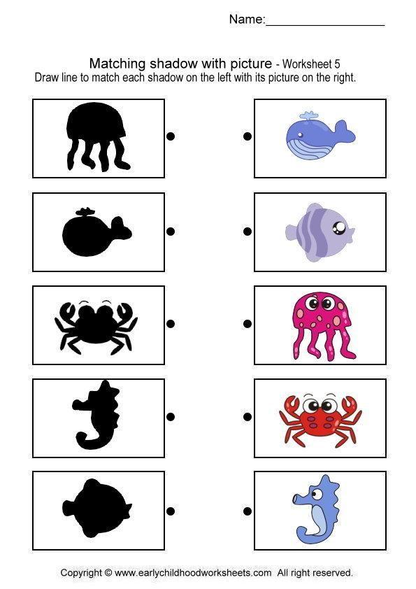 match sea animal shadow worksheet