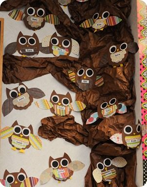 owl project owl