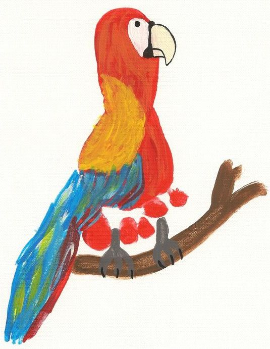 parrot foot print