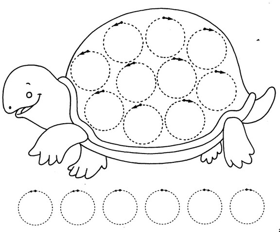 Turtle Trace Worksheet Crafts And Worksheets For Preschool