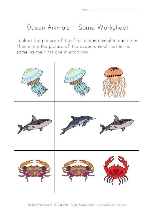 Ocean Animals Same Printable