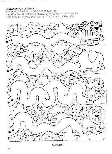animals  trace worksheet
