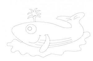 blue whale trace