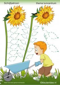 flower_trace_worksheet_for_kids