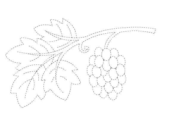grape trace worksheet