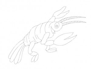 lobster trace worksheet